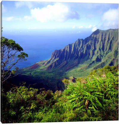 Overview Of The Kalalau Valley, Na Pali Coast State Park, Kaua'i, Hawai'i, USA Canvas Art Print