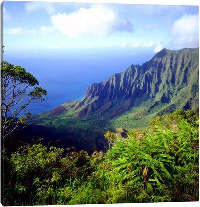 Overview Of The Kalalau Valley, Na Pali Coast State Park, Kaua'i, Hawai'i, USA Canvas Art Print