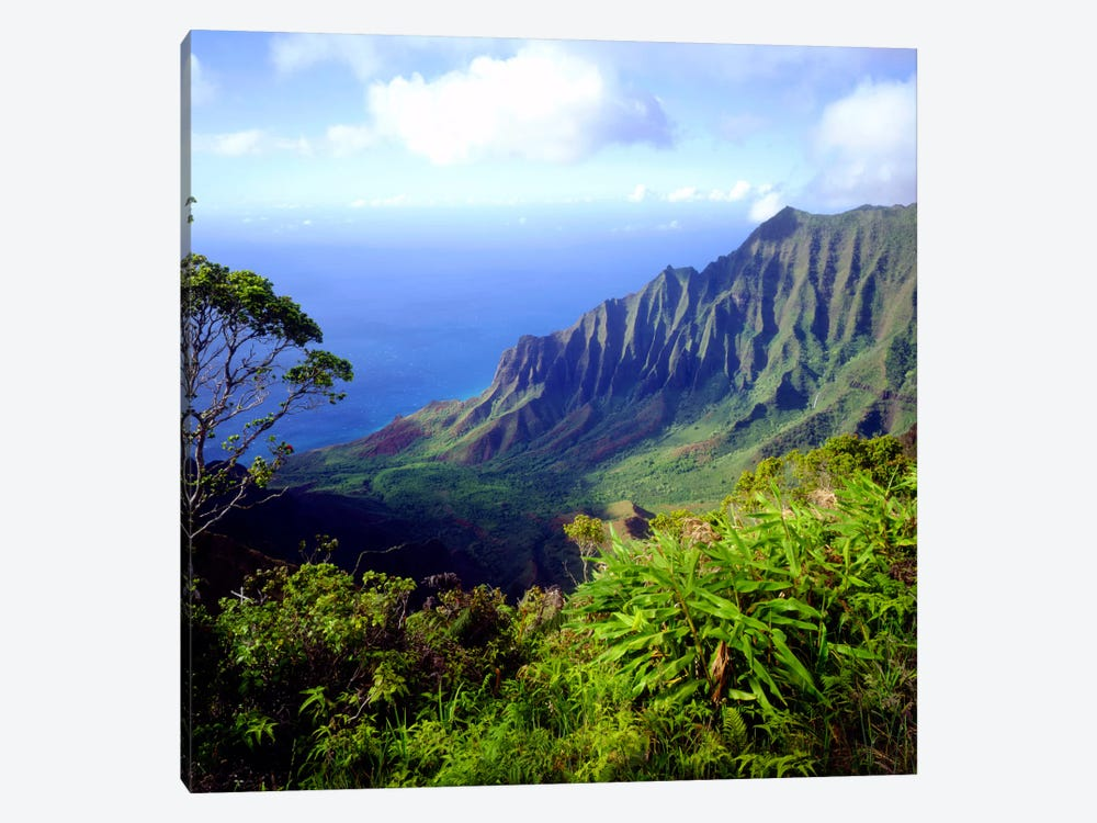 Overview Of The Kalalau Valley, Na Pali Coast State Park, Kaua'i, Hawai'i, USA by Christopher Talbot Frank 1-piece Art Print
