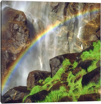 Rainbow Across Bridalveil Fall, Yosemite Valley, Yosemite National Park, California, USA Canvas Art Print