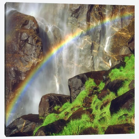 Rainbow Across Bridalveil Fall, Yosemite Valley, Yosemite National Park, California, USA Canvas Print #CTF8} by Christopher Talbot Frank Art Print