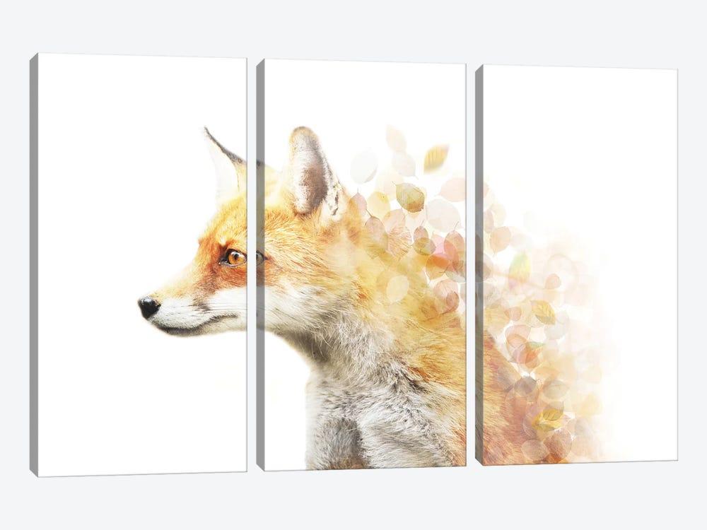 Winter Foxy by Emanuela Carratoni 3-piece Canvas Art Print