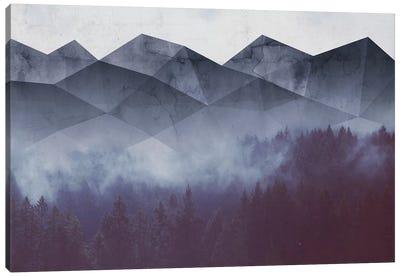 Winter Glory Canvas Art Print