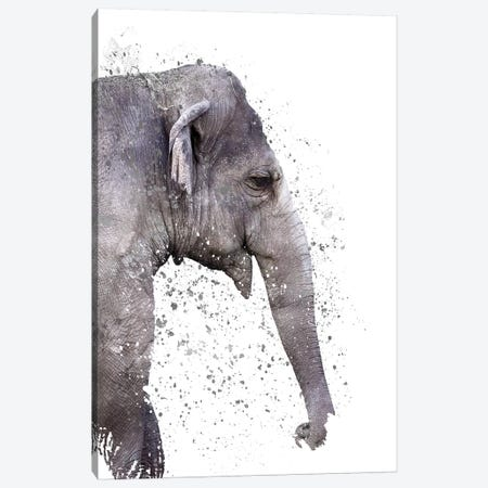 The Big Elephant Canvas Print #CTI120} by Emanuela Carratoni Canvas Artwork