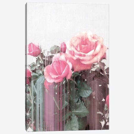 Rose All Day 3-Piece Canvas #CTI137} by Emanuela Carratoni Canvas Art