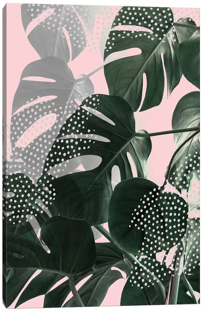Monsteras On Pink Canvas Art Print