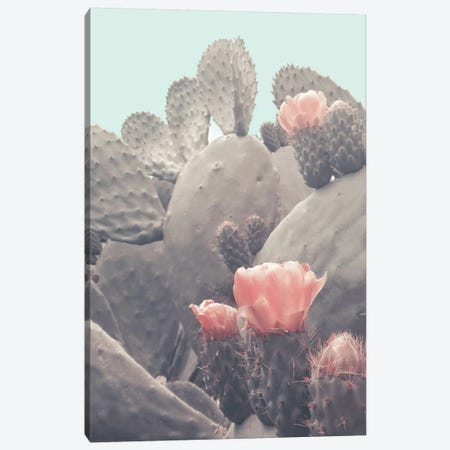 Desert Cactus Blossom 3-Piece Canvas #CTI201} by Emanuela Carratoni Art Print