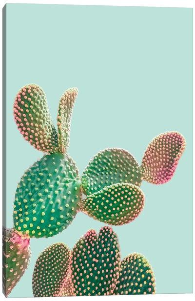 Pastel Cactus Canvas Art Print