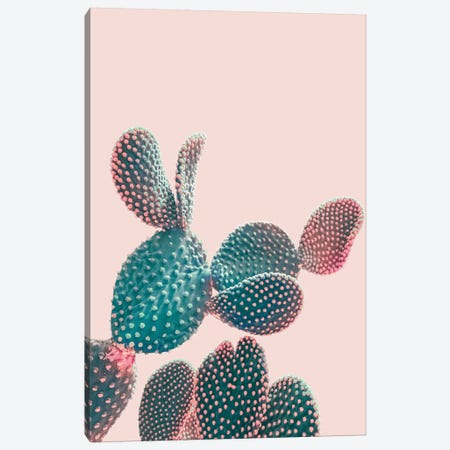 Pink Pastel Cactus 3-Piece Canvas #CTI216} by Emanuela Carratoni Canvas Print