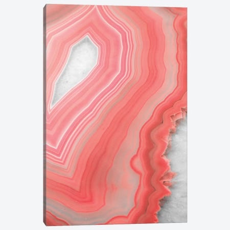 Coral Agate Canvas Print #CTI22} by Emanuela Carratoni Canvas Art