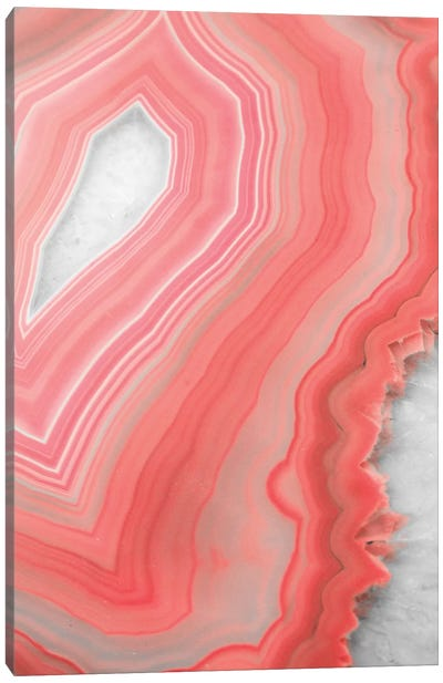 Coral Agate Canvas Art Print