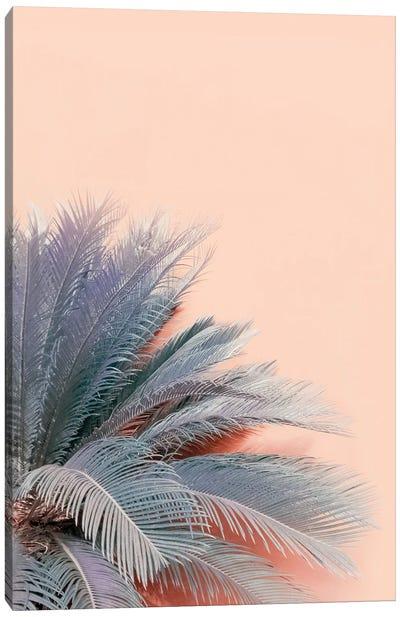 Blue Palms On Pink Canvas Art Print