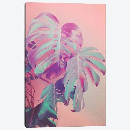 Growing Monstera Canvas Print #CTI265} by Emanuela Carratoni Canvas Art