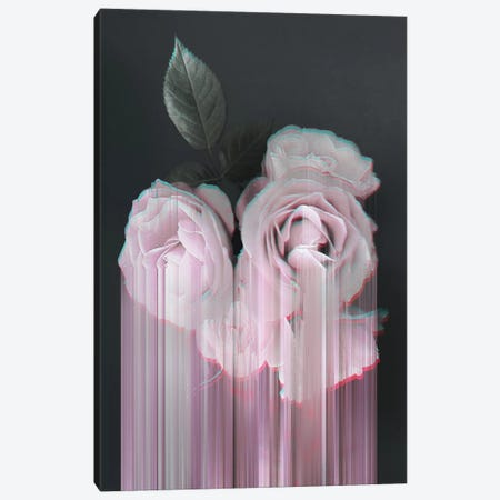 Fall In Rose Canvas Print #CTI31} by Emanuela Carratoni Art Print