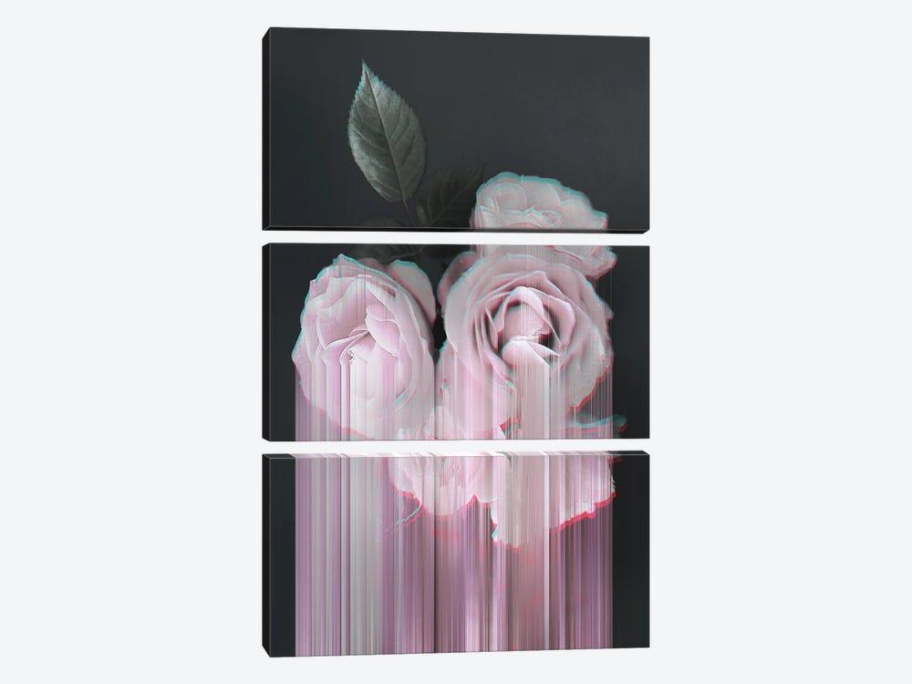 Fall In Rose by Emanuela Carratoni 3-piece Art Print