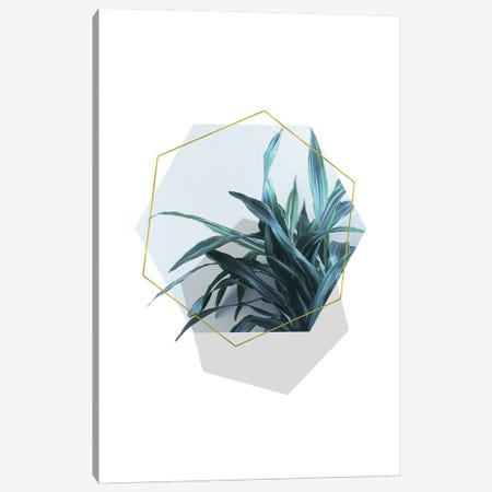 Geometric Jungle Canvas Print #CTI36} by Emanuela Carratoni Canvas Artwork