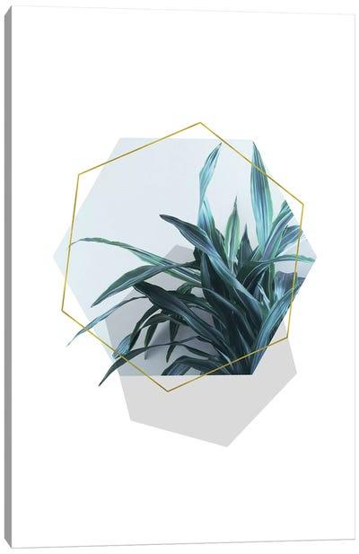 Geometric Jungle Canvas Art Print