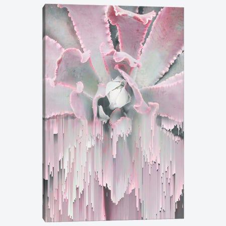 Glitched Succulent I Canvas Artwork By Emanuela Carratoni Icanvas