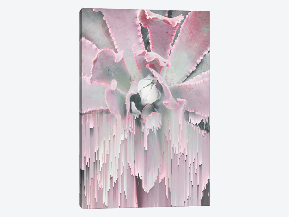 Glitched Succulent I by Emanuela Carratoni 1-piece Canvas Art