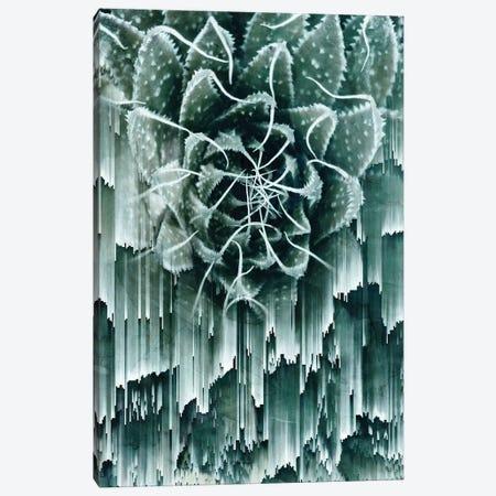 Glitched Succulent II Canvas Print #CTI39} by Emanuela Carratoni Art Print