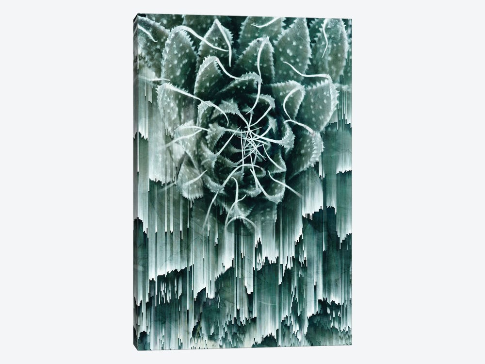 Glitched Succulent II by Emanuela Carratoni 1-piece Art Print