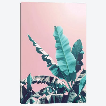 Bananas On Pink Canvas Print #CTI5} by Emanuela Carratoni Canvas Print
