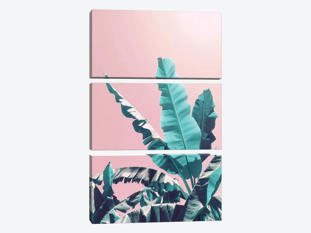Bananas On Pink by Emanuela Carratoni 3-piece Canvas Print