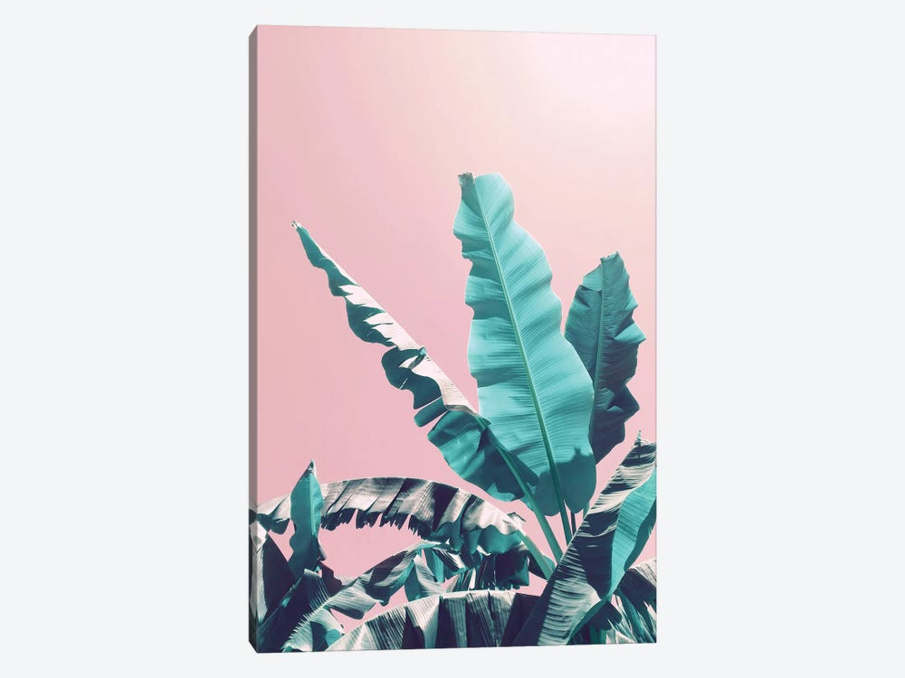 Bananas On Pink by Emanuela Carratoni 1-piece Canvas Print