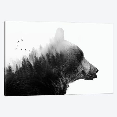 Big Bear I 3-Piece Canvas #CTI6} by Emanuela Carratoni Art Print
