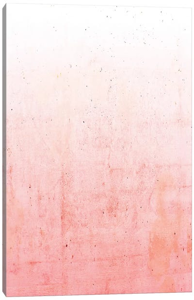 Pink Ombre Canvas Art Print