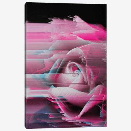 Rosa Rosae Canvas Print #CTI77} by Emanuela Carratoni Canvas Artwork