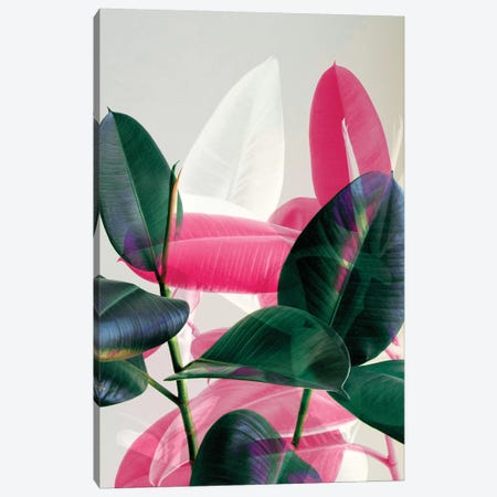 Tropical Leaves Canvas Print #CTI93} by Emanuela Carratoni Art Print