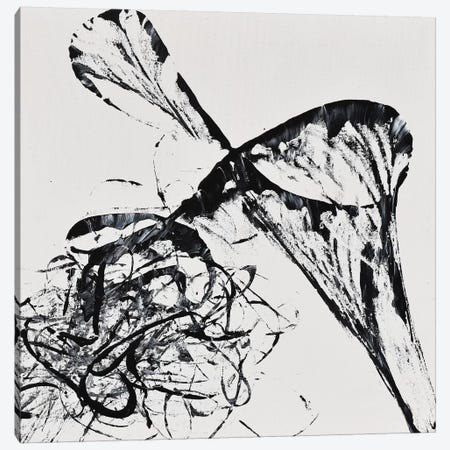 String Theory Energy Canvas Print #CTK17} by Christian Klingeler Canvas Artwork