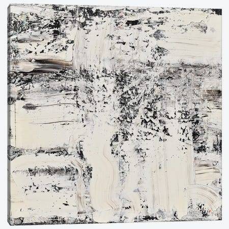 Elemental Breath Canvas Print #CTK7} by Christian Klingeler Canvas Art Print