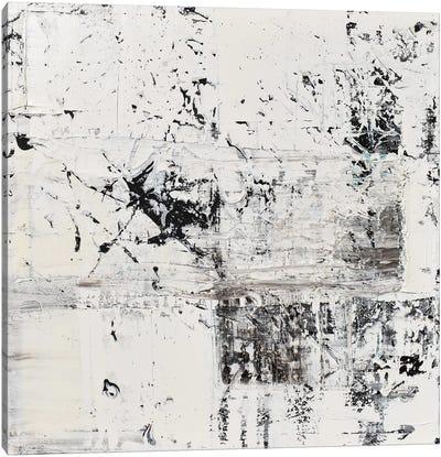 Elemental Frost Canvas Art Print