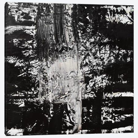 Elemental Spark Canvas Print #CTK9} by Christian Klingeler Canvas Wall Art