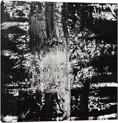 Elemental Spark Canvas Art Print