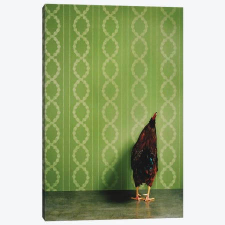Rooster Facing Wall Canvas Print #CTL114} by Catherine Ledner Canvas Art