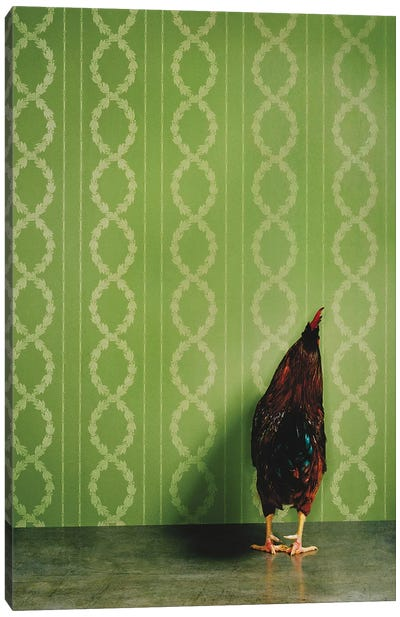 Rooster Facing Wall Canvas Art Print