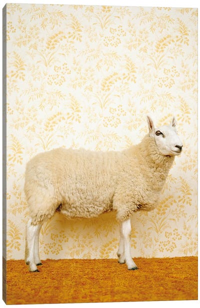 Sheep Standing On Yellow Canvas Art Print