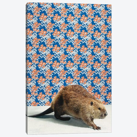 Beaver Walking Canvas Print #CTL11} by Catherine Ledner Canvas Art