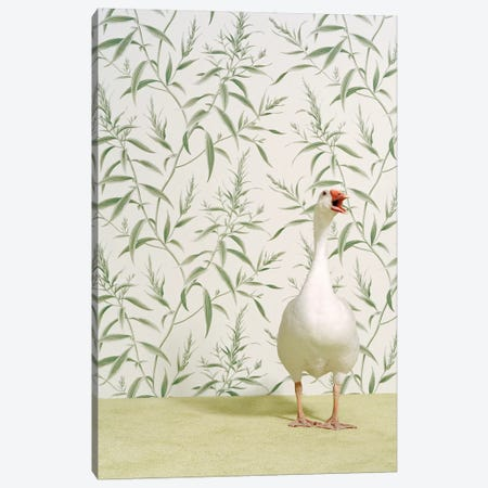 Talking Goose Canvas Print #CTL124} by Catherine Ledner Canvas Art Print