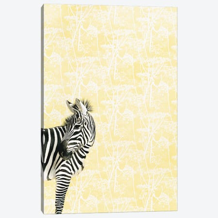 Zebra Head Turned Canvas Print #CTL131} by Catherine Ledner Canvas Print