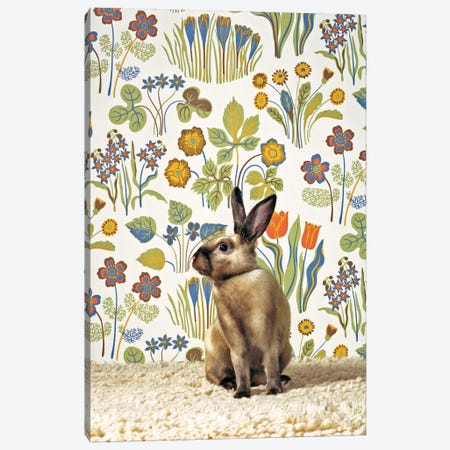 Bunny Canvas Print #CTL21} by Catherine Ledner Art Print