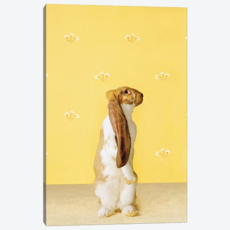 Bunny Standing Canvas Print #CTL24} by Catherine Ledner Canvas Wall Art