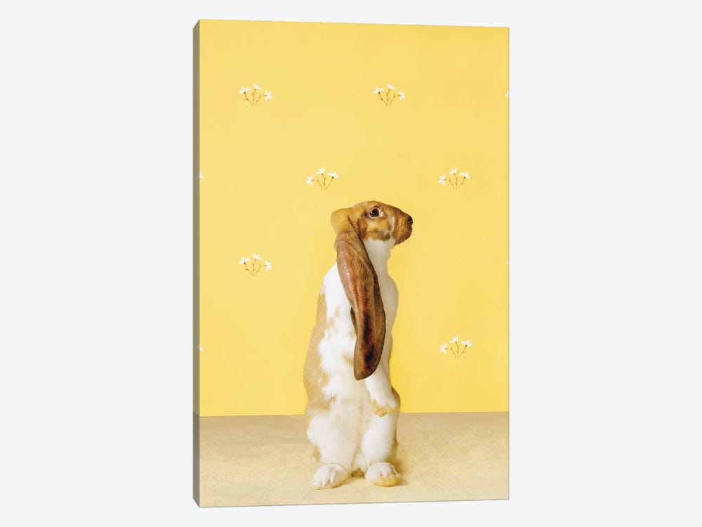 Bunny Standing by Catherine Ledner 1-piece Art Print