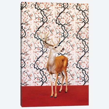 Deer To Side Canvas Print #CTL37} by Catherine Ledner Canvas Print