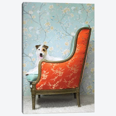 Dog In Fancy Chair Canvas Print #CTL38} by Catherine Ledner Canvas Wall Art