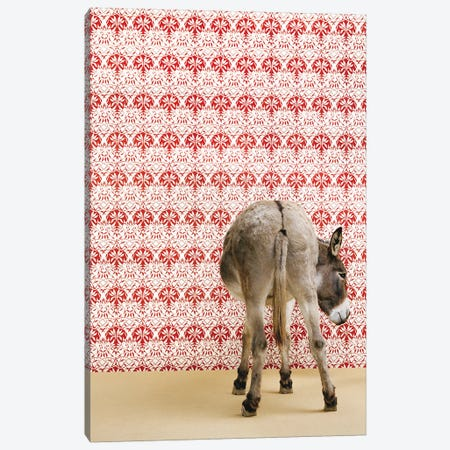 Donkey Butt Canvas Print #CTL39} by Catherine Ledner Canvas Wall Art
