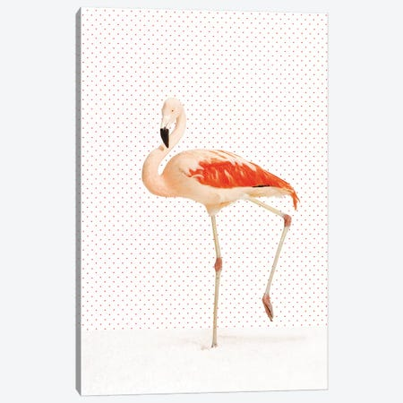 Flamingo III Canvas Print #CTL44} by Catherine Ledner Canvas Wall Art